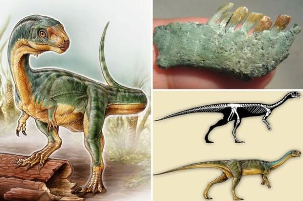 Chilesaurus-diegosuareziMAIN